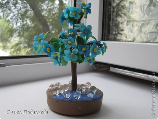 Деревце фото 3