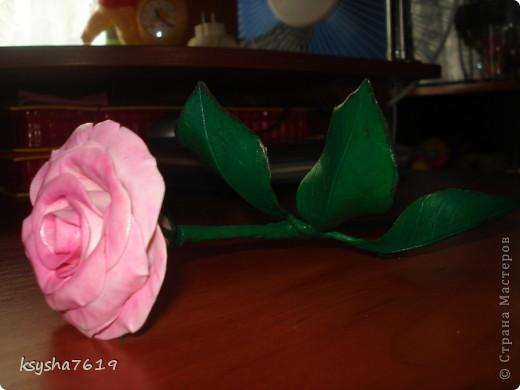 Здравствуйте, все кто заглянул ко мне.вот такой подарок я сделала для своей мамочки. фото 4
