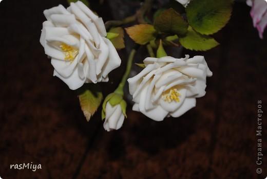 Здравствуйте, дорогие мастерицы, вот после долгого молчания выставляю на ваш суд мои новые цветы. Правда, определиться с их названием не могу, что-то среднее между садовой розой и шиповником...  фото 1