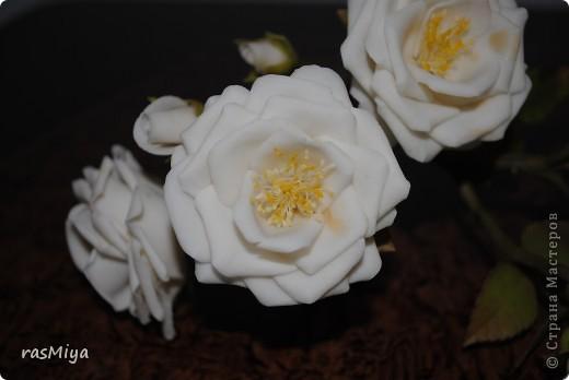 Здравствуйте, дорогие мастерицы, вот после долгого молчания выставляю на ваш суд мои новые цветы. Правда, определиться с их названием не могу, что-то среднее между садовой розой и шиповником...  фото 4