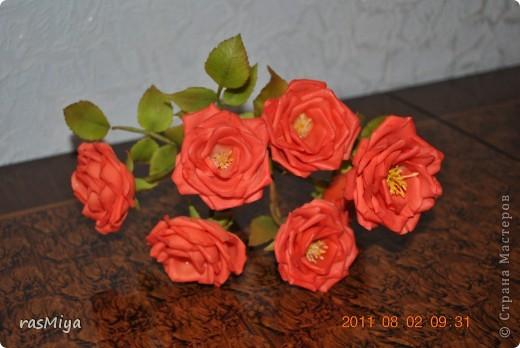 Здравствуйте, дорогие мастерицы, вот после долгого молчания выставляю на ваш суд мои новые цветы. Правда, определиться с их названием не могу, что-то среднее между садовой розой и шиповником...  фото 5