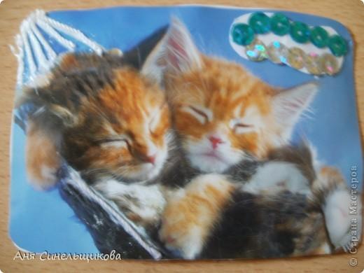 Эту серию мы посвятили нашим домашним животным: Масяне и Тиме, ведь они тоже когда-то были маленькими пушистыми котятами. фото 13
