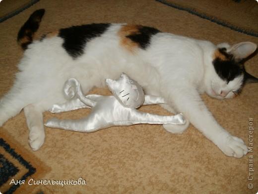 Этого котика я сшила своей маме на день Рождение. фото 4