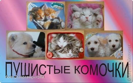Эту серию мы посвятили нашим домашним животным: Масяне и Тиме, ведь они тоже когда-то были маленькими пушистыми котятами. фото 2