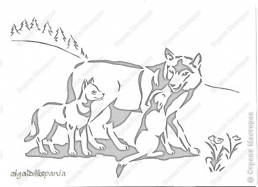 Семья волков фото 3