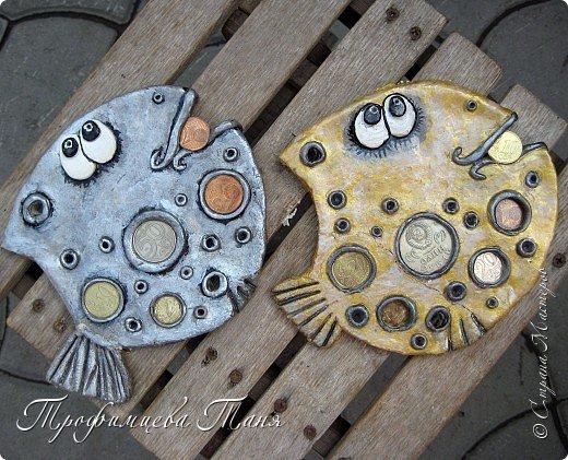 денежные рыбки фото 1
