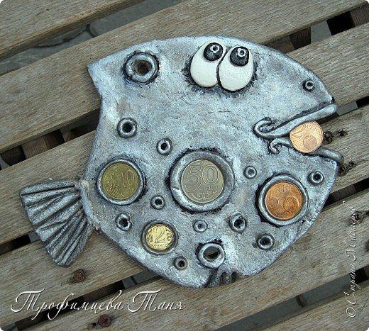 денежные рыбки фото 2