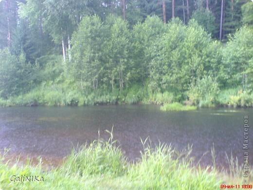 7. Над водой порхают стрекозы с голубыми крылышками.