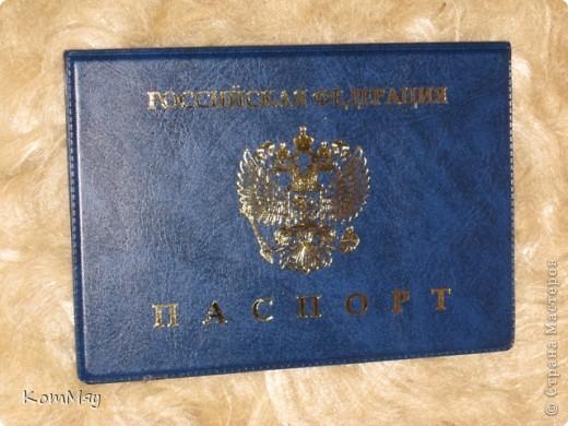 Что-то мне понравилось исправлять обложки для паспортов, и я решила сделать обложку для паспорта дочери. Понятно, что она - любитель собак. Более того, собаки - это её работа.  фото 2