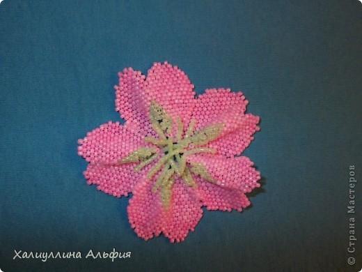 Автор: Admin Дата: 30.10.2013 Описание: Бисероплетение цветы - это достаточно легкая техника изготовления изделий из...