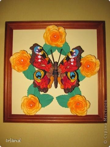 Моя первая красивая бабочка, сама она 10х10, рамка 20х20. фото 1