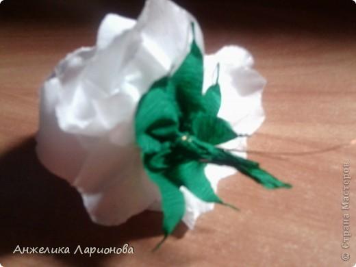 Вам потребуется:  Цветная гофрированная бумага – для цветка;  Зелёная гофрированная бумага – для чашелистиков и листьев;  Проволока «волосы ангела»;  Металлический стебель, шпажка (зубочистка).  Шаблоны лепестков (А и В), чашелистика (С) и листа (Д) фото 14