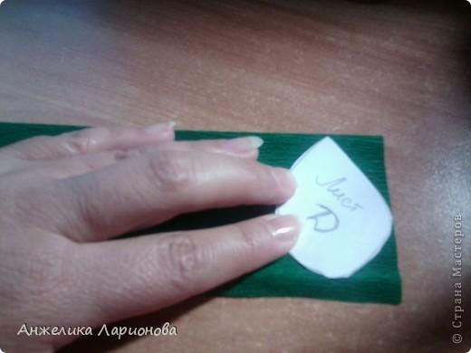 Вам потребуется:  Цветная гофрированная бумага – для цветка;  Зелёная гофрированная бумага – для чашелистиков и листьев;  Проволока «волосы ангела»;  Металлический стебель, шпажка (зубочистка).  Шаблоны лепестков (А и В), чашелистика (С) и листа (Д) фото 17