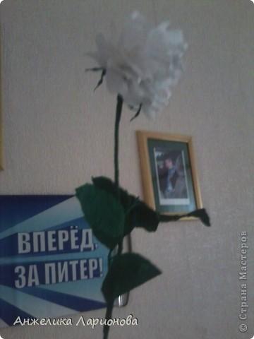 Вам потребуется:  Цветная гофрированная бумага – для цветка;  Зелёная гофрированная бумага – для чашелистиков и листьев;  Проволока «волосы ангела»;  Металлический стебель, шпажка (зубочистка).  Шаблоны лепестков (А и В), чашелистика (С) и листа (Д) фото 1
