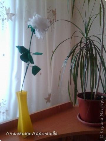 Вам потребуется:  Цветная гофрированная бумага – для цветка;  Зелёная гофрированная бумага – для чашелистиков и листьев;  Проволока «волосы ангела»;  Металлический стебель, шпажка (зубочистка).  Шаблоны лепестков (А и В), чашелистика (С) и листа (Д) фото 22