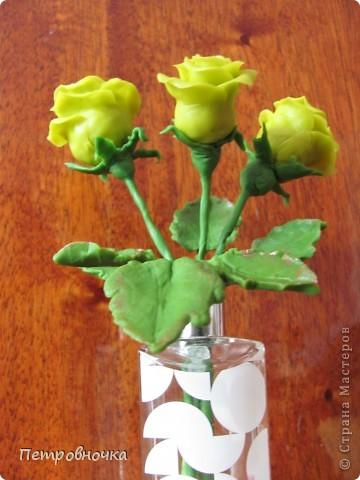 Насмотревшись на чужие розы, опять пытаюсь создать, что-то более совершенное. Вот впервые окрасила массу масляной краской, большой разницы с гуашью пока не ощутила. Но зато оценила совет варить массу в посуде с антипригарным покрытием. фото 4