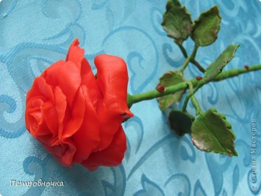 Насмотревшись на чужие розы, опять пытаюсь создать, что-то более совершенное. Вот впервые окрасила массу масляной краской, большой разницы с гуашью пока не ощутила. Но зато оценила совет варить массу в посуде с антипригарным покрытием. фото 1