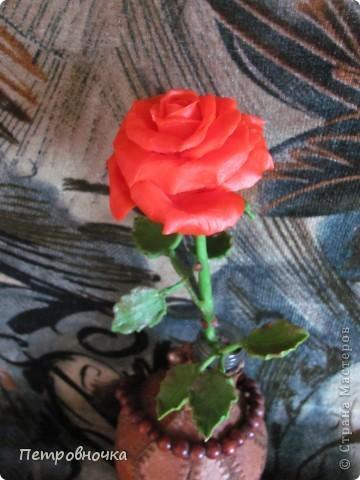 Насмотревшись на чужие розы, опять пытаюсь создать, что-то более совершенное. Вот впервые окрасила массу масляной краской, большой разницы с гуашью пока не ощутила. Но зато оценила совет варить массу в посуде с антипригарным покрытием. фото 2