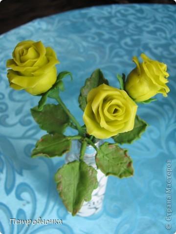 Насмотревшись на чужие розы, опять пытаюсь создать, что-то более совершенное. Вот впервые окрасила массу масляной краской, большой разницы с гуашью пока не ощутила. Но зато оценила совет варить массу в посуде с антипригарным покрытием. фото 5