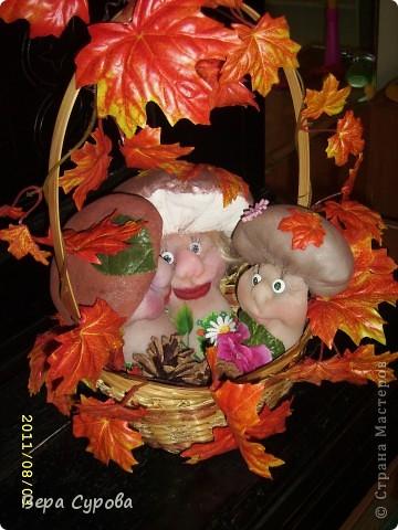 Счастливая грибная семья фото 9
