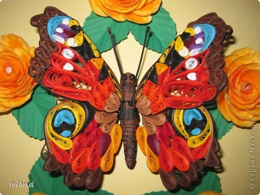 Моя первая красивая бабочка, сама она 10х10, рамка 20х20. фото 2