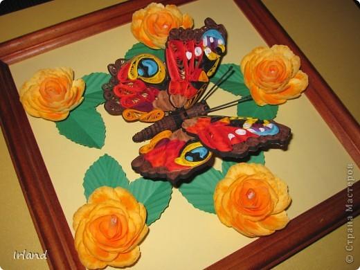 Моя первая красивая бабочка, сама она 10х10, рамка 20х20. фото 3