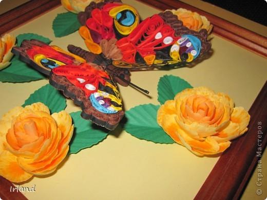 Моя первая красивая бабочка, сама она 10х10, рамка 20х20. фото 4