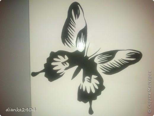 Бабочки в зале фото 1