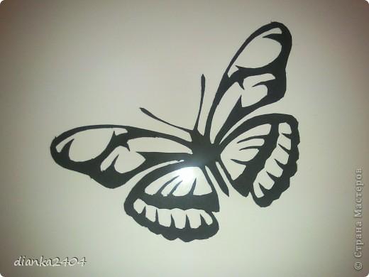 Бабочки в зале фото 2