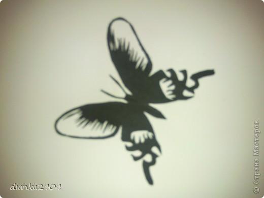 Бабочки в зале фото 3
