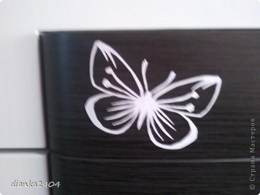 Бабочки в зале фото 4