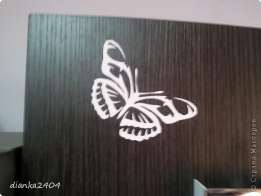 Бабочки в зале фото 5