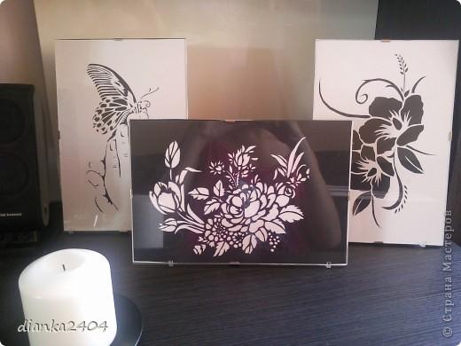 Бабочки в зале фото 12
