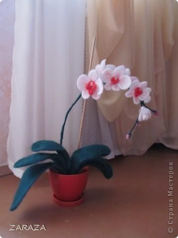 давно хотела сделать орхидею, попала на мастер-класс по валянию, правда мокрому, но меня заинтересовало и сухое. вот решила попробовать. дебют мой так сказать. не удите строго)) фото 1