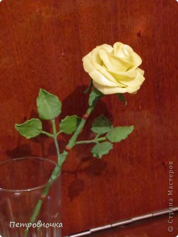 Вот вчера сваяла еще розу. фото 7