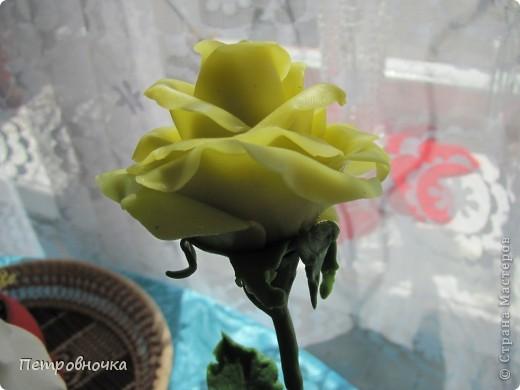 Вот вчера сваяла еще розу. фото 6