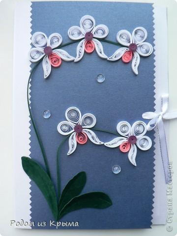 Мужчина дома сам выращивает орхидеи, поэтому других вариантов оформления открытки и не было... фото 1