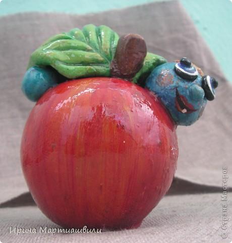 Еще одна лягушечка и яблочко фото 7