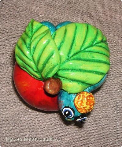 Еще одна лягушечка и яблочко фото 6