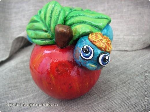 Еще одна лягушечка и яблочко фото 5
