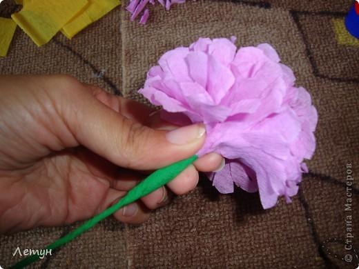 """Цветы из гофрированной бумаги. У сестры свадьба, сделала для выкупа, т.к. тематика выкупа """"Цветочный магазин"""". фото 14"""