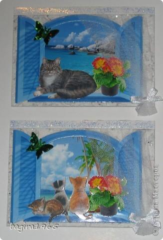 В этой многослойности - я сбилась со счету, сколько всего слоев... За окном пейзаж: тропики, море, пальмы, солнце... На подоконнике цветы, и кошки отдыхают в прохладной тени... № 1 это мой Васька - оставляю себе № 2 - выбрала моя племянница Лиза фото 1