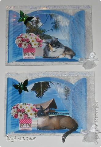 В этой многослойности - я сбилась со счету, сколько всего слоев... За окном пейзаж: тропики, море, пальмы, солнце... На подоконнике цветы, и кошки отдыхают в прохладной тени... № 1 это мой Васька - оставляю себе № 2 - выбрала моя племянница Лиза фото 2