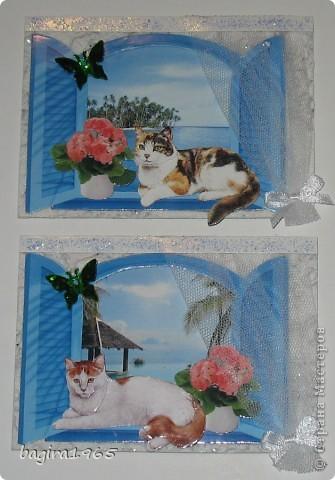 В этой многослойности - я сбилась со счету, сколько всего слоев... За окном пейзаж: тропики, море, пальмы, солнце... На подоконнике цветы, и кошки отдыхают в прохладной тени... № 1 это мой Васька - оставляю себе № 2 - выбрала моя племянница Лиза фото 3