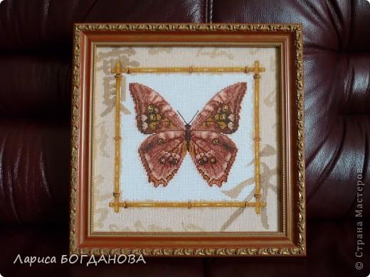 Бабочка. Вышивка.