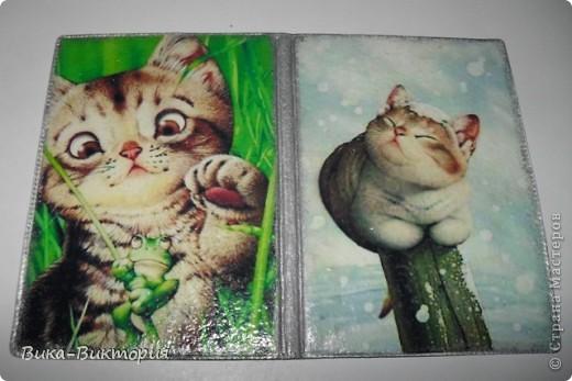 Моя первая обложка, автора картинки к сожалению я не знаю, но уж очень понравились котики. фото 3