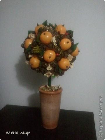 хотя мандарины не растут на елках,в стране Мастеров возможно все!