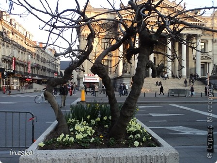 Вот мы и приехали в Брюссель,и сразу же пошли в центр ,Это площадь Императоров если не ошибаюсь а это и памятник одному из них фото 60