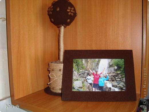 Кофейное дерево и рамка фото 1