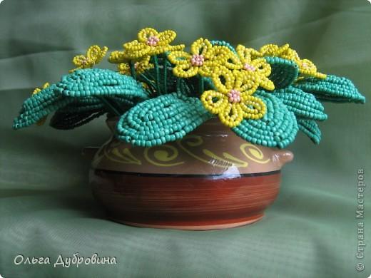 4. Эта фиалка намного меньше : 14 листьев и 7 цветков.  Сделана в подарок очень хорошему человеку.
